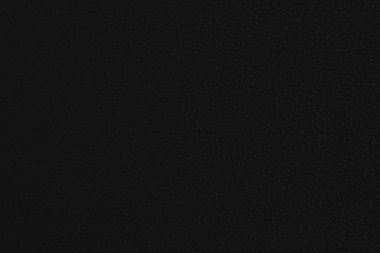 Образец искусственной кожи DIAMOND 0900