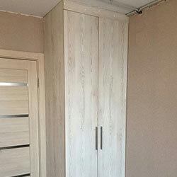 Встроенный шкаф-купе № 1119