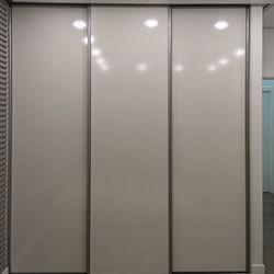 Встроенный шкаф-купе № 0041