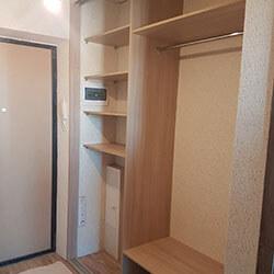 Встроенный шкаф-купе № 0550